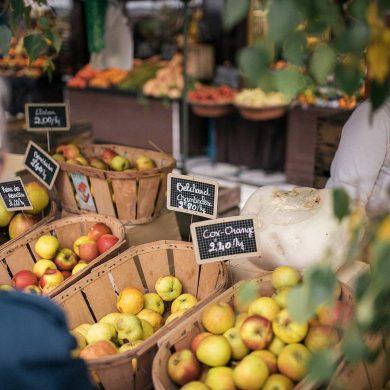 La pomme, signature de la Normandie