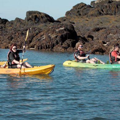 Découverte des îles Chausey avec les pêcheurs