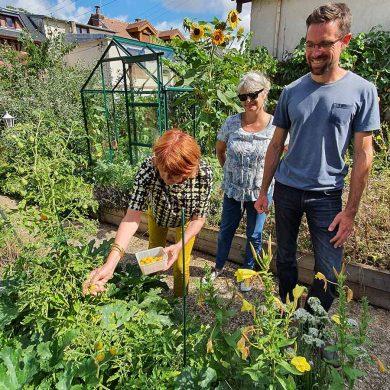 Je démarre mon potager en permaculture