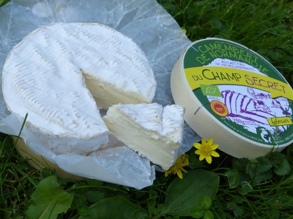 Camembert de Normandie de la ferme du Champ Secret