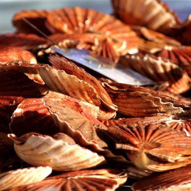 Gastronomie : ces spécialités normandes que l'on nous envie !