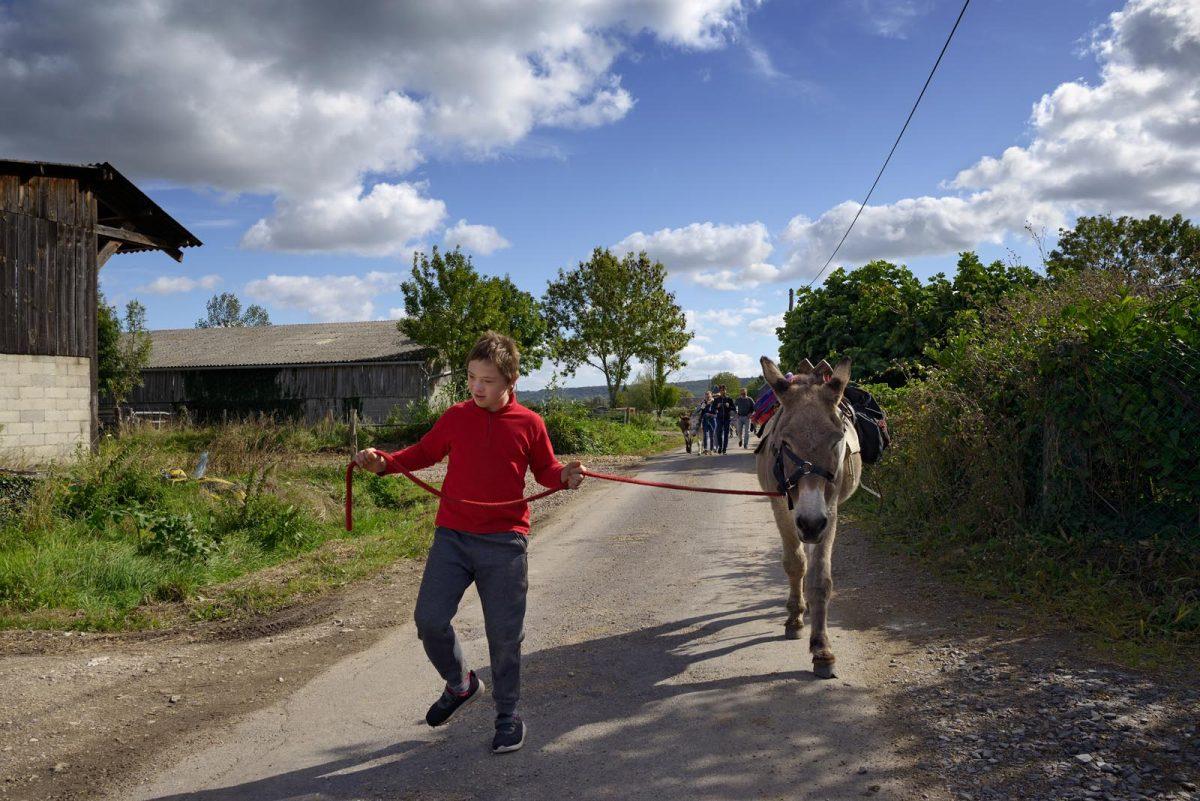 expérience balade à dos d'âne au coeur du Marais Vernier