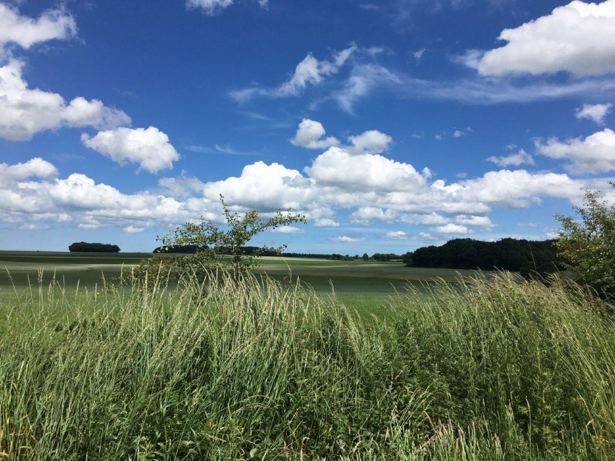 Champs et ciel nuageux sur la Véloroute du Lin