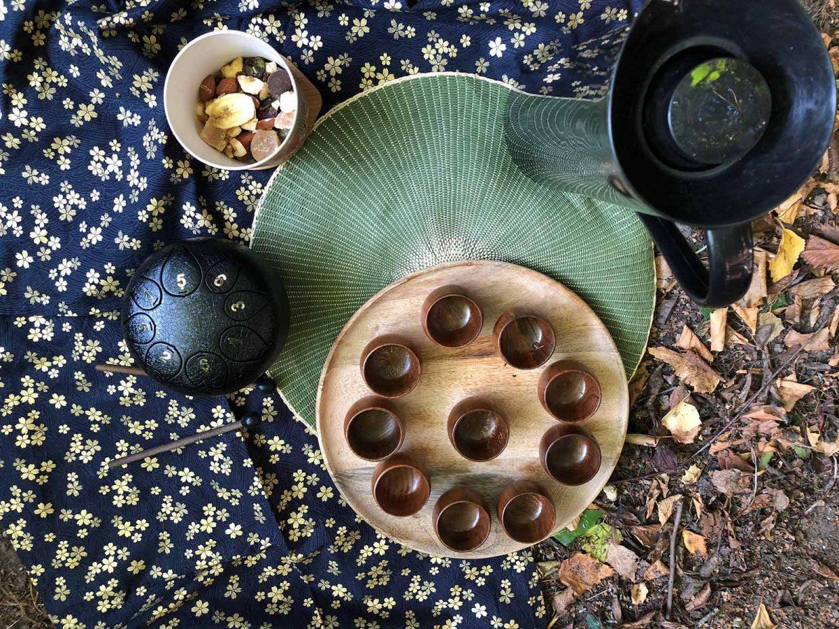 Expérience shirin-yoku ou bain de forêt