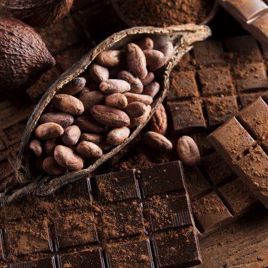 Ces chocolatiers normands vont vous faire fondre !