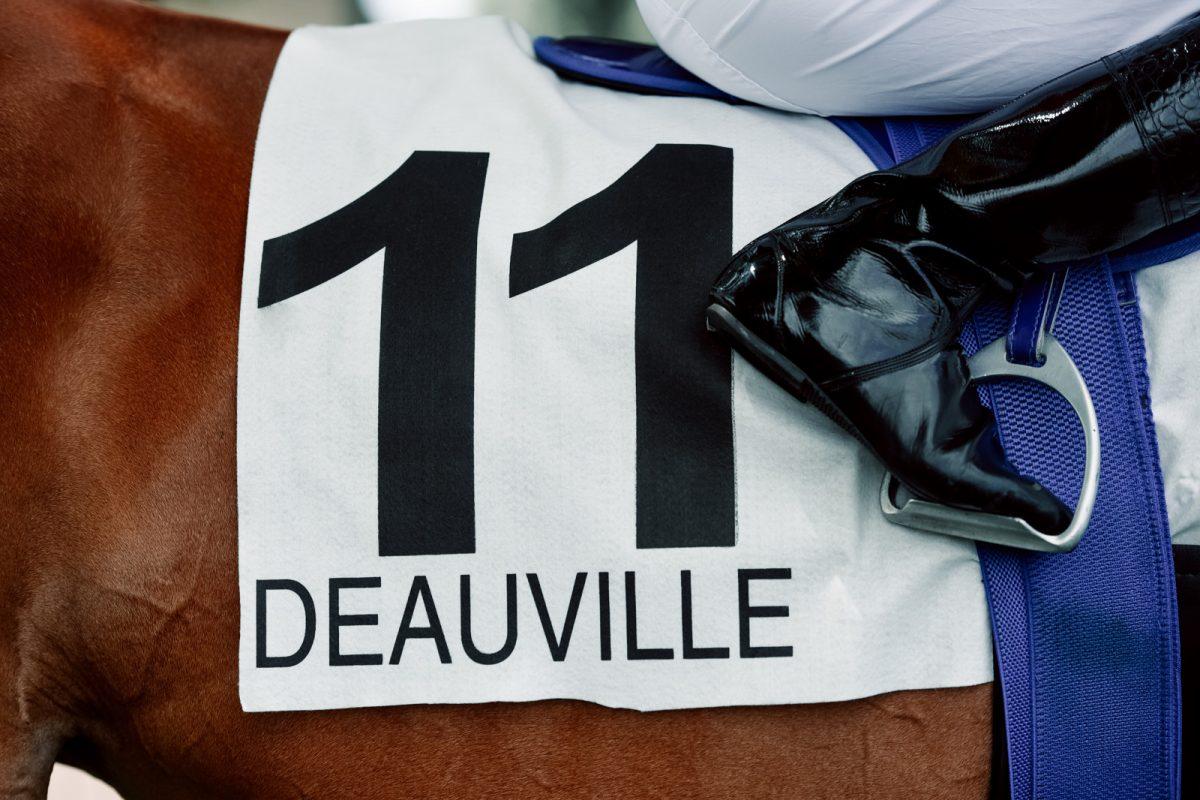 Courses de galop à Deauville