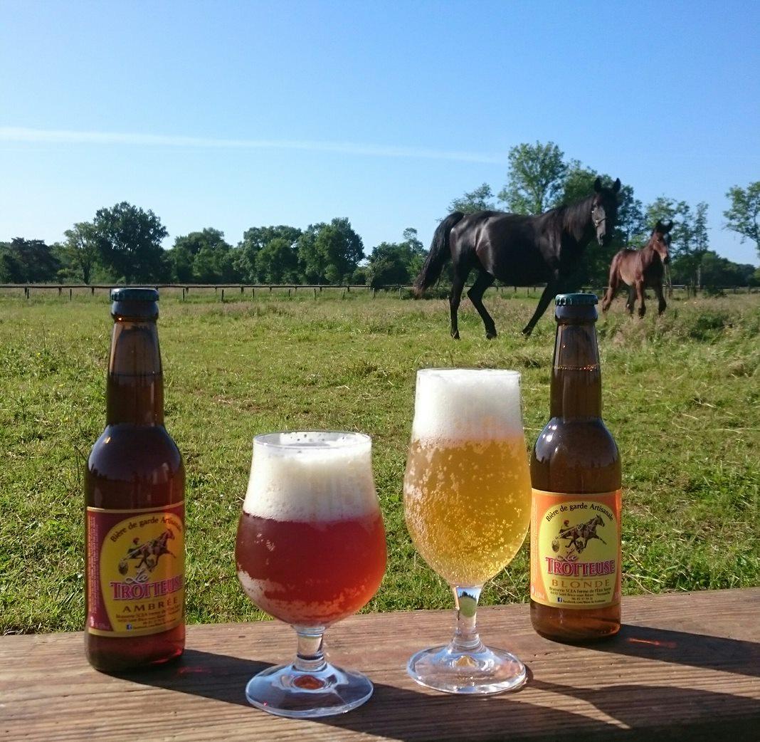 Bière normande La Trotteuse
