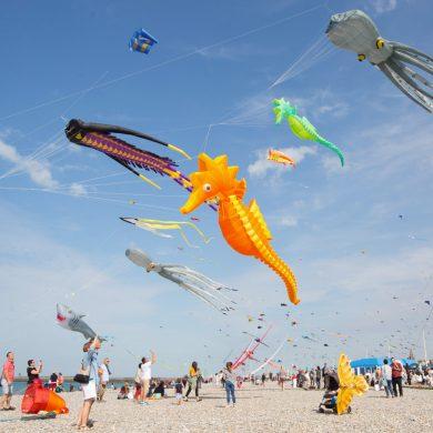 Le Festival de cerf-volant de Dieppe