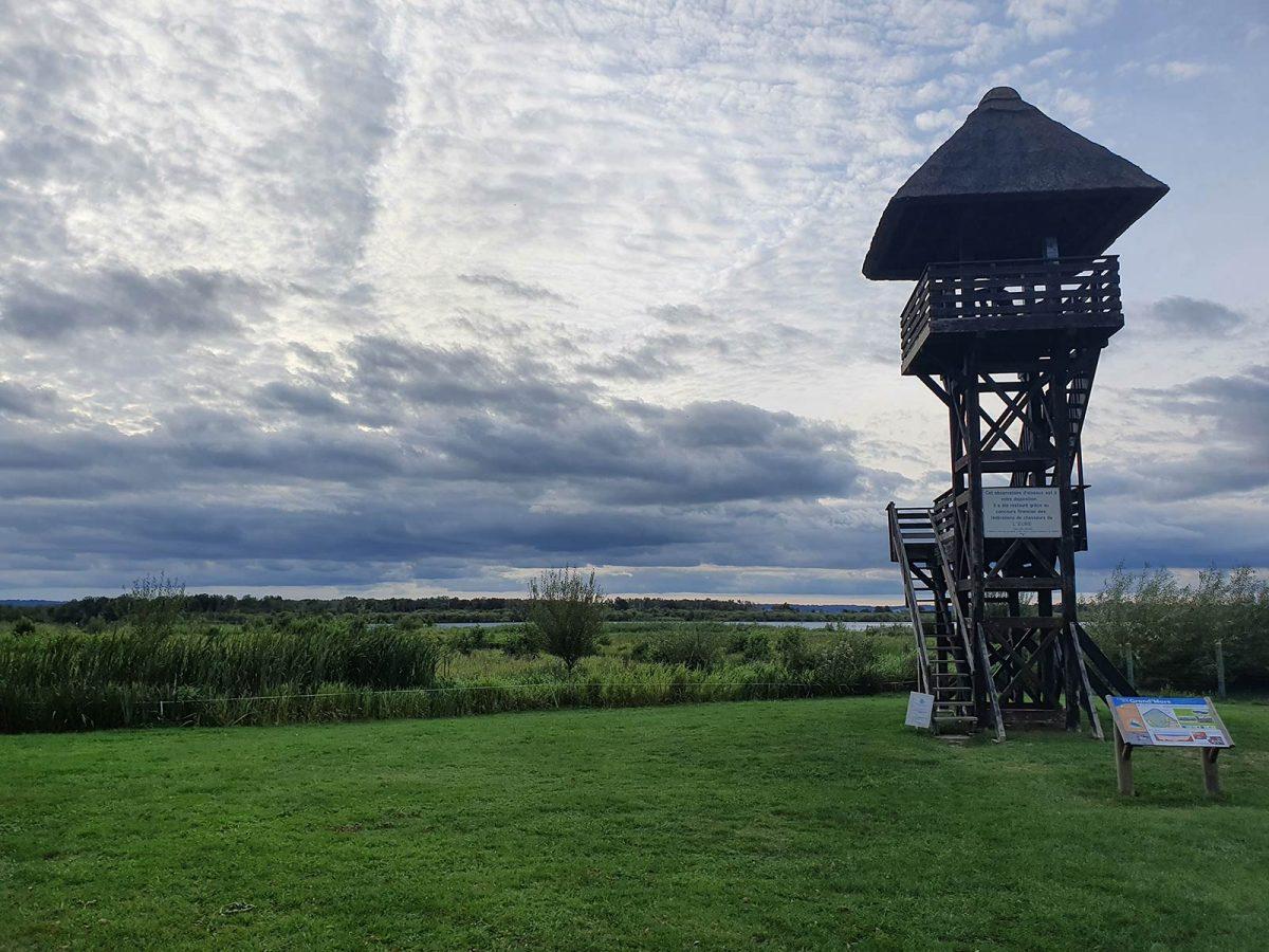 Observatoire de la Grand Mare au coeur du Marais Vernier