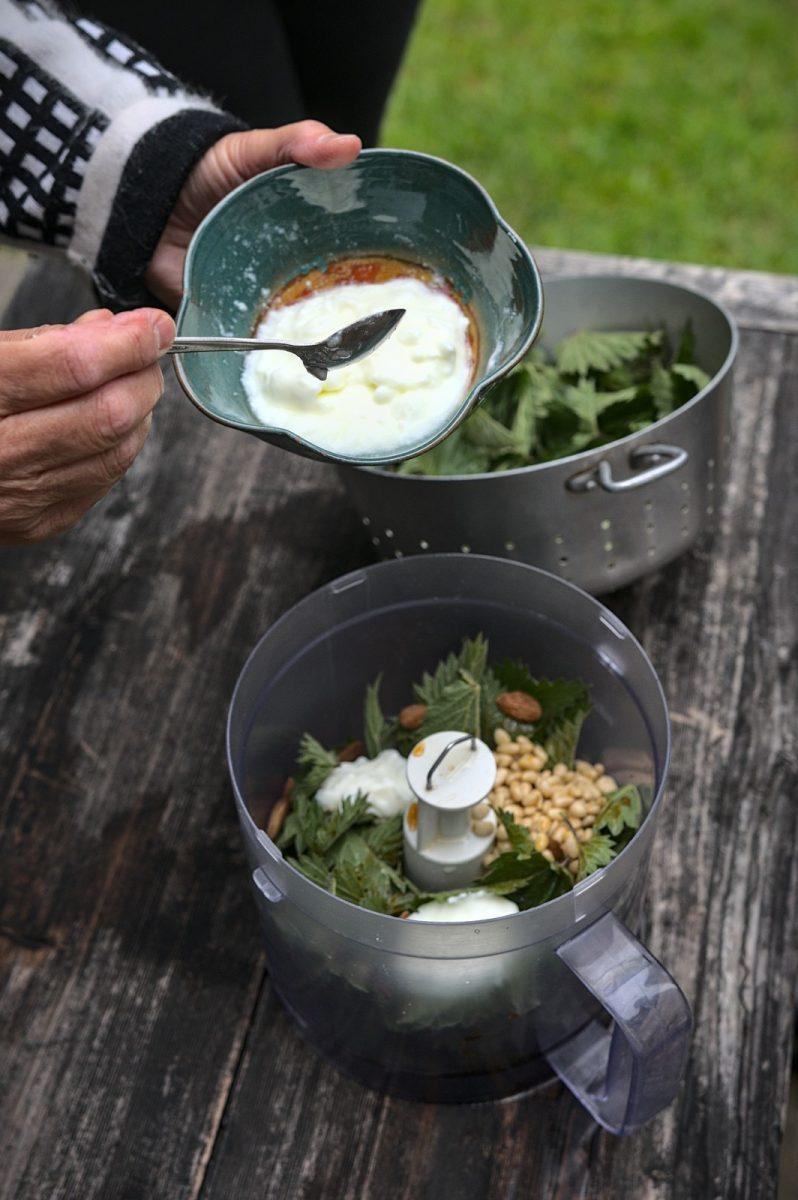 Préparation de la tartinade d'orties