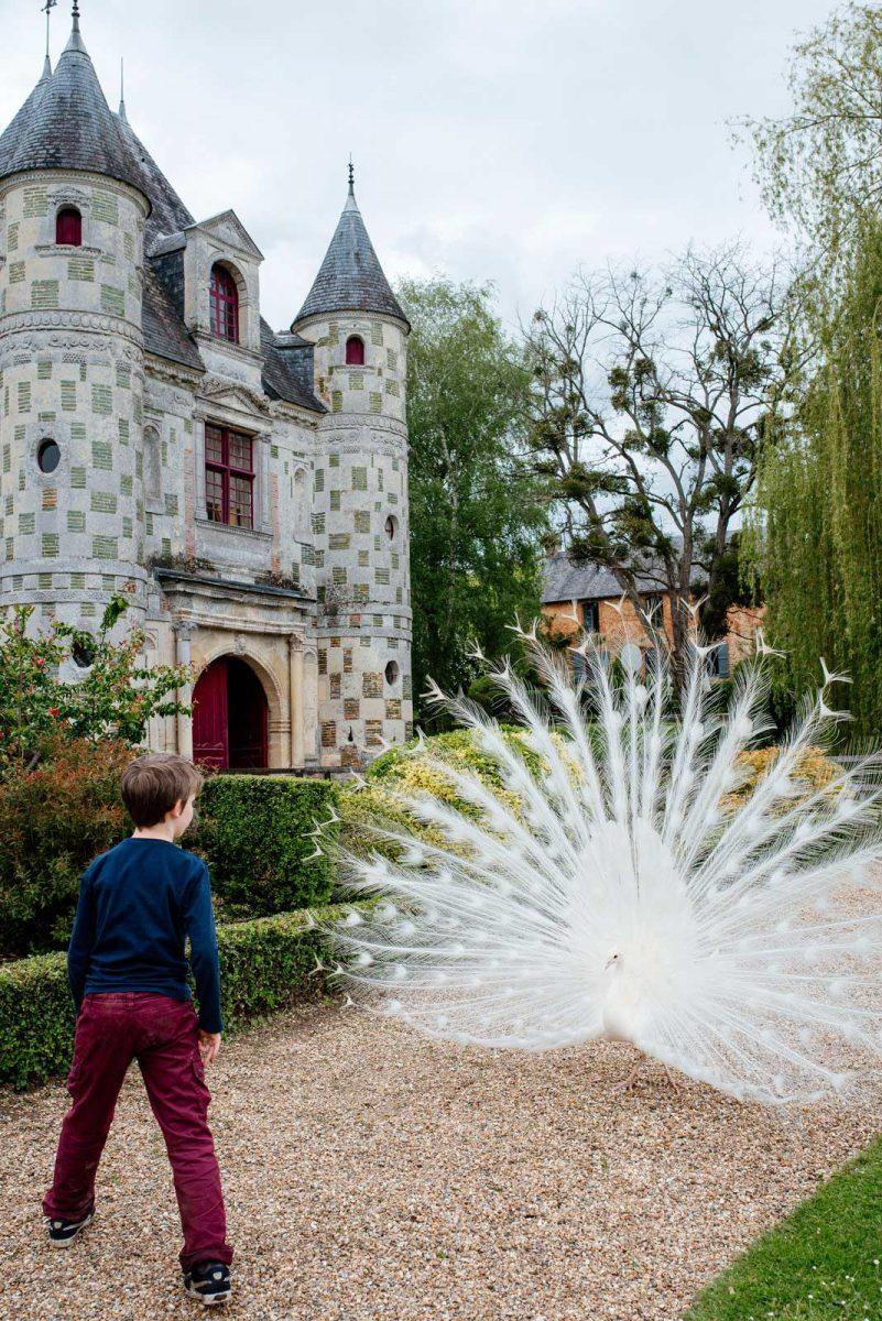 Devant le château de St-Germain-de-Livet