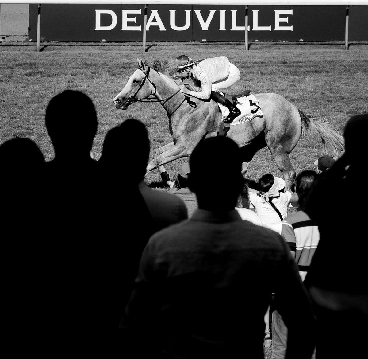 Hippodrome de Deauville - La Touques