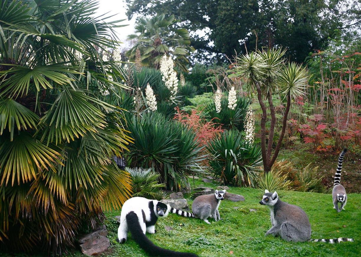 Les jardins exotiques du Parc Zoologique de Champrépus