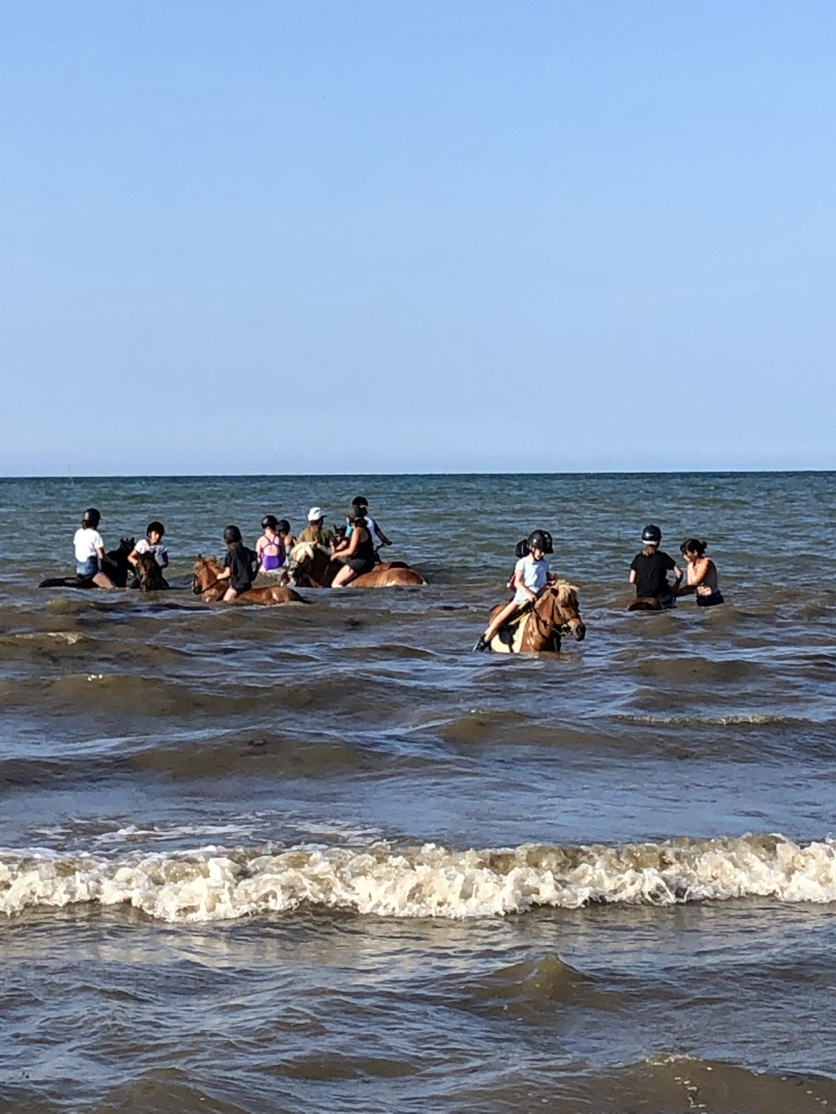 Tester la baignade à cheval